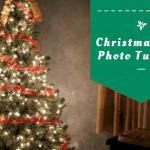 Christmas Tree Family Photo