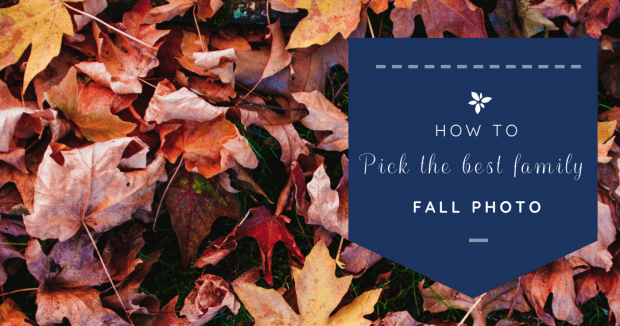 how to pick the best family fall photo