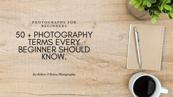 50 + Photography terms every beginner should know.